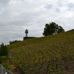 Le phare au milieu des vignes