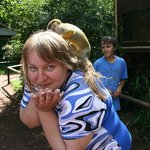 Serengeti-Park Hodenhagen  |  Am Safaripark 1, 29693 Ходенхаген, Нижняя Саксония...