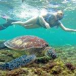 Snorkeling in Apo Island © Sabrina Iovino | JustOneWayTicket.com