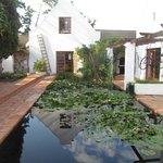 Fish pond & Tavern