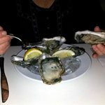 Oysters at Shippeys