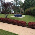 Вот этот прекрасный сад из которого слышится ежедневное пение птиц)