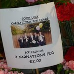 Carnations for the grad exams when we were there