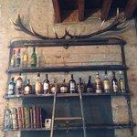 bar antlers