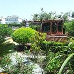Il giardino della piscina