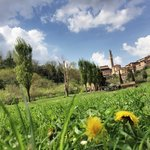 panorama di Siena dall'Orto de' Pecci