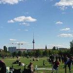 Mauerpark gegenüber 50m