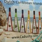 The Cactus Range of liqueurs
