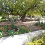 Attractive patio & grounds