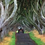 "Nearby ""The Dark Hedges"" - Game of Thrones location"