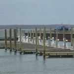 Sag Harbour