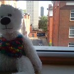 Camden the bear on window at Thistle City Barbican Hotel