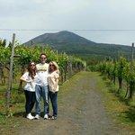 Cantina Del Vesuvio winery and tasting, Trecase near Naples  / Pompeii, Erculaneum
