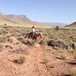 Horse riding at Bar10!