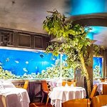 n the downstairs restaurant a real feature is the incredible wall to wall aquarium