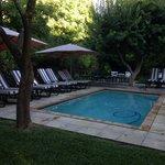 Maison Chablis Pool
