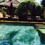Garden pool for villas