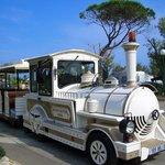 """""""Le Petit Train"""""""