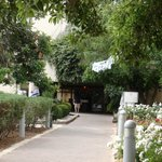 Photo of Ramat Rachel Resort