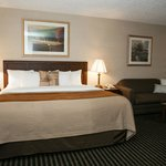 Photo de Comfort Inn Utica