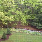 View outside my second floor room. Gorgeous landscaping! Picture taken through screen.