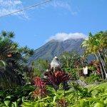Blick am Morgen auf den Vulkan Arenal