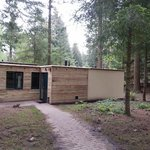 "2 bed ""Woodland Lodge"""