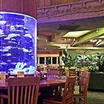 Fish tank in dining room