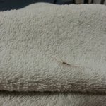 In all of our 5 rooms had similar problems with our towels ...