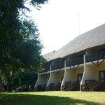 Safari rooms