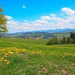 Schön Aussicht ins Westallgäu