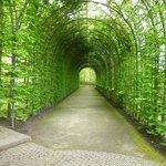 Walk Through archway