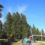 Skywalk, Scheidegg, Attraktionen