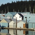 Boathouses at the harbour