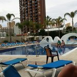 Pool at the Rosamar