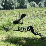 Symbol of the vineyard