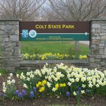 Sign/Daffodils at Colt State Park