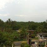 Вид с крыши отеля