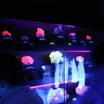 Minerales fluorescentes