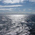 Sunny seascape