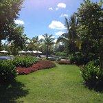 les jardins près de la piscine