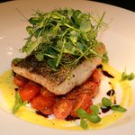 fillet of hake with baby plum tomatoes & micro basil
