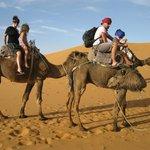 balades dans les dunes