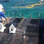 Plataforma de mergulho