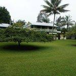 Tropischer Garten mit Appartments