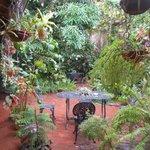 el hermoso patio