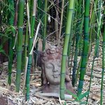 Bamboo and statues in the yard