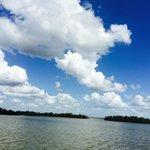 Astonishing Everglades Sky