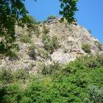 View across the hillside