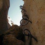 Metal Rings on the Rings Trail.